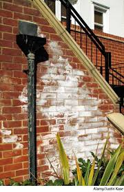 Handrail Synonym Efflorescence Dictionary Definition Efflorescence Defined
