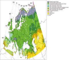 Russian Boreal Forest Disturbance Maps by Dury M Hambuckers A Warnant P Henrot A Favre E Ouberdous M
