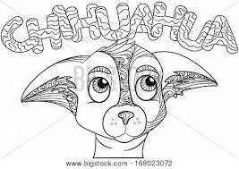 zentangle stylized doodle ornate vector u0026 photo bigstock
