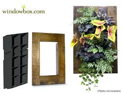living room how to make a living wall planter diy succulent
