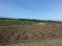 1 2 acre land in naivasha for a bargain of 3m commercial or