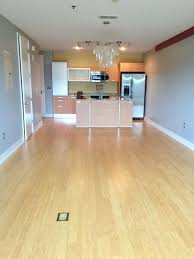 Laminate Flooring Charlotte Nc Apartment Unit 306 At 1133 Metropolitan Avenue Charlotte Nc