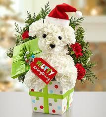 dog flower arrangement santa paws 2014 christmas flowers for dog santa