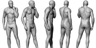 Female Body Reference For 3d Modelling Get Over 500 Free Anatomy Images From Anatomy 360 Cg Channel