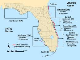 Map Of Florida East Coast Beaches by Show Florida Beaches Becoming Darker And That U0027s Good For Sea Turtles