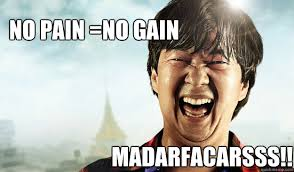 Mr Chow Memes - no pain no gain madarfacarsss mr chow quickmeme