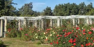 Huntington Botanical Garden by Franfreluches U0026 Falbalas A Gentleman Blog The Huntington
