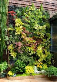 outdoor backyard vertical garden maintenance tips for vertical