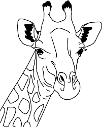 african giraffe coloring page free printables pinterest