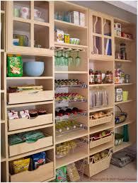 Ikea Pantry Shelf by Kitchen Pantry Closet Ideas Pantry Storage Kitchen Pantry Shelves