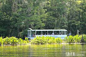 Florida nature activities images Free or cheap activities to do with kids in florida simply today jpg