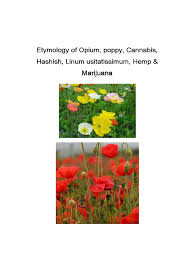 opium history of opium production in india opium prohibition of drugs