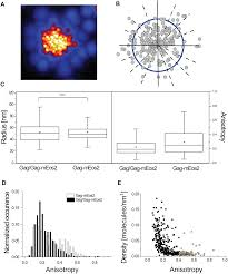 a quantitative approach to evaluate the impact of fluorescent