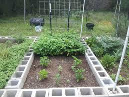 txcg u0027s 2013 grow log big harvest 9 7 glogs the pepper