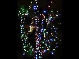 palm trees with christmas lights youtube