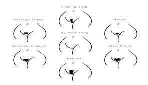 pubic hair gallery different hairstyles for different pubic hairstyles thought you