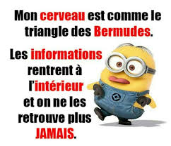 Comme Meme - minions french style french class pinterest french style