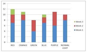 how does light affect plant growth colored lights plant growth how does light affect plant growth do