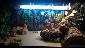 the basking temp is around 107 the cool side is around 83 i m using a reptisun 10 0 uvb bulb he used to have a hammock in one of the corners but he