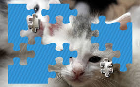 kittens jigsaw puzzle free puzzle games for kids android apps on