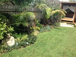 tropical garden ideas tropical landscape design ideas