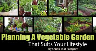 how to start a vegetable garden for beginners how to start a vegetable garden that suits your lifestyle