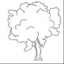 excellent tree leaves coloring pages with tree coloring pages