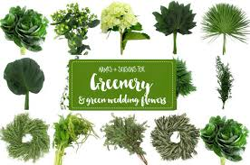 wedding flowers types guide to greenery for weddings green wedding flower names