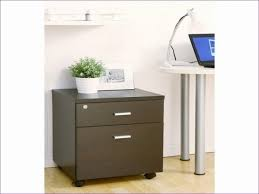 2 Drawer Rolling File Cabinet Furnitures Ideas Awesome 4 Drawer File Cabinet On Wheels 2