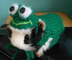 frog halloween costume halloween costume crocheted guinea pig frog sweater with