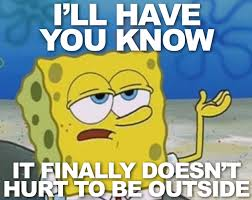 How Tough Am I Meme - 15 funny spring memes to get you through these chilly spring days