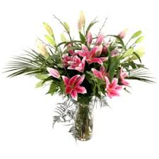 Pink Lily Flower Lily Flowers Lilies Bouquets Lilies Bloomingamazing Ie