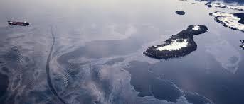 si ge auto b b quel age une ponge a t cr e pour absorber les mar es noires 1583 jpeg