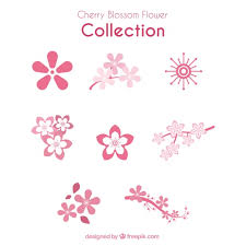 decorative cherry blossoms in flat design vector free