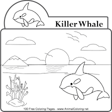 coloring page killer whale killer whale coloring pages with wallpapers picture