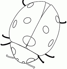 top easy insect coloring pages for kids womanmate com