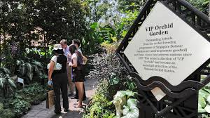 What Time Does The Botanical Gardens Close by Singapore Botanic Gardens Unesco World Heritage Site Cnn Travel