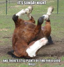 Its Sunday Meme - it s sunday night and there s still plenty of time for a good roll