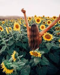 Girls Favourite Flowers - best 25 sunflower photography ideas on pinterest sunflower