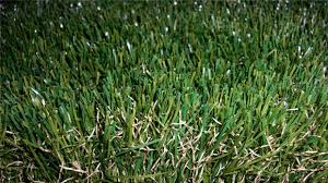 16800 density paper grass mat dividing ornamental grasses in