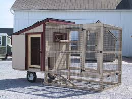 Backyard Quail Pens And Quail Housing by 80 Best Quail Images On Pinterest Chicken Coup Backyard