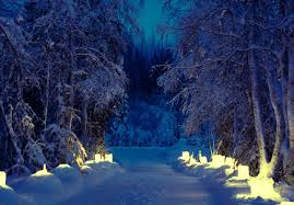 misc lighted trees path lights winter snow pathway dual