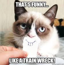 Grumpy Cat Friday Meme - cat train wreck