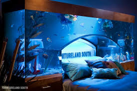 awesome aquarium bed lets you sleep with the fishes
