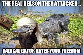 Gator Meme - radical gator is radical imgflip