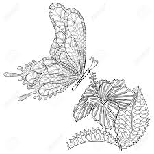 hand drawn tribal flying butterfly and hibiskus flower for