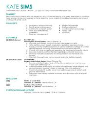 Examples Of Resume Summary by Best Social Worker Resume Example Livecareer