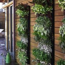 apartment balcony garden balcony garden the lovely plants