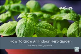 indoor herbs to grow how to grow an indoor herb garden