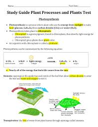 Photosynthesis Concept Map Study Guide Plant Processes And Plants Test Photosynthesis